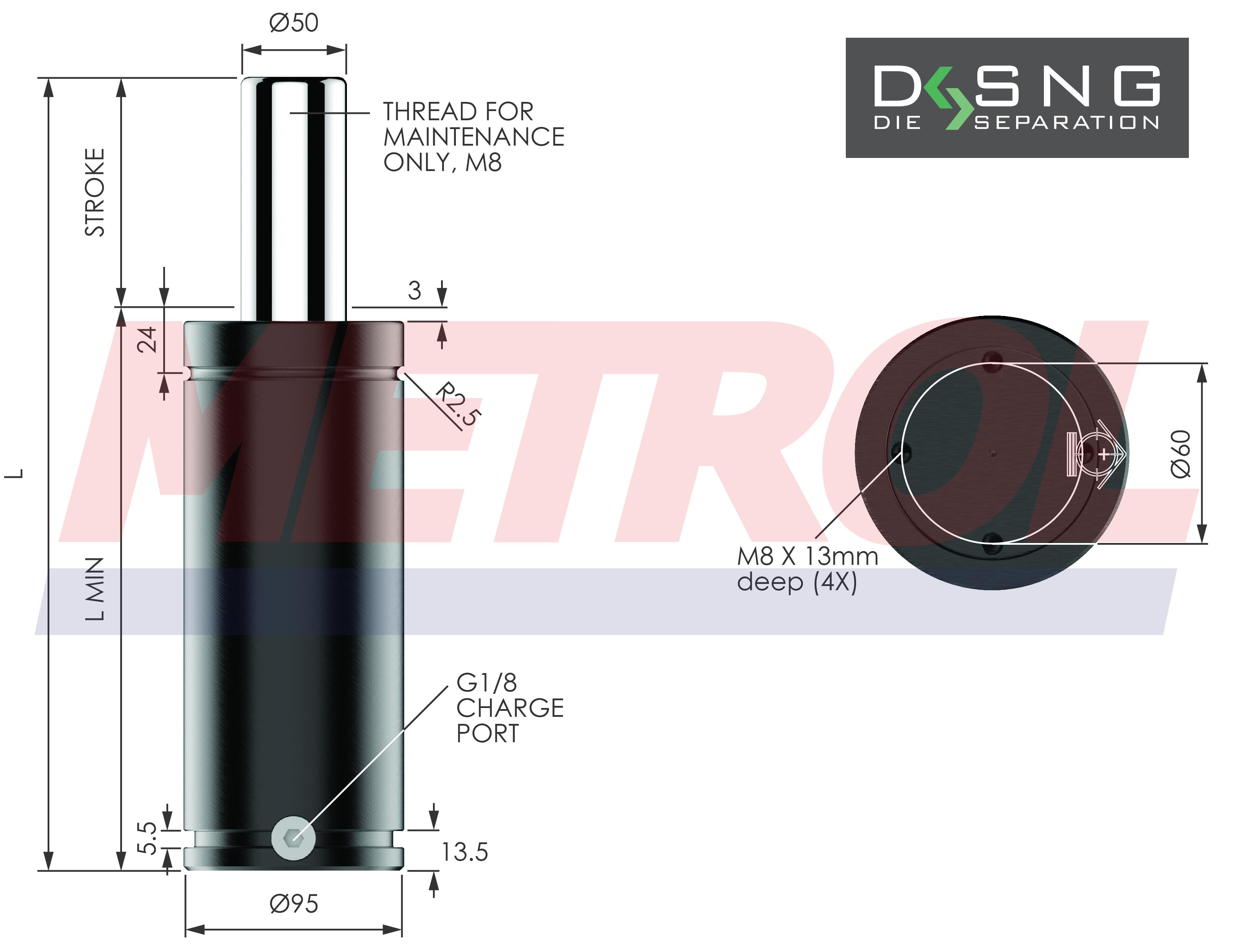 DSNG-3000